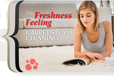carpet steam cleaning Boulder,CO