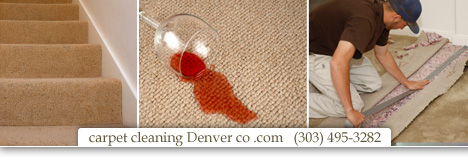 Carpet Cleaning Highlands Ranch